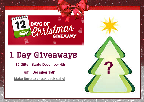 12 Days of Christmas competitions 2015