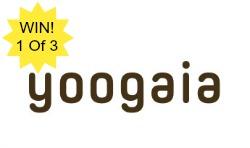 yoogaia-win