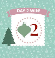 Day 2 #12XmasDays – WIN One of Four Braun PT5010 Precision Trimmers