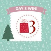 Day 3 #12XmasDays - WIN!