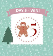 Day 5 #12XmasDays – WIN One of Four Drumond Park Dig In Games