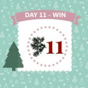 Day 11 #12XmasDays - WIN!