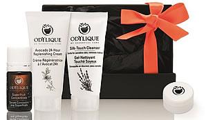Odylique Original Gift Box