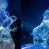 Edinburgh Ice Museum