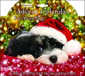 PDSA Dog Calendar
