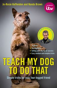 Teach My Dog
