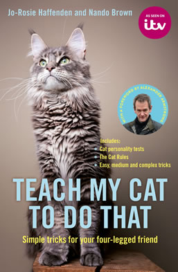 Teach My Cat To Do That