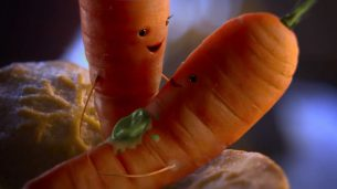 Aldi Christmas ad 2017 - Kevin and Katie the carrot