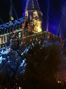 Wizarding World Of Harry Potter Christmas Show