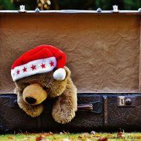 Christmas Winter Suitcase