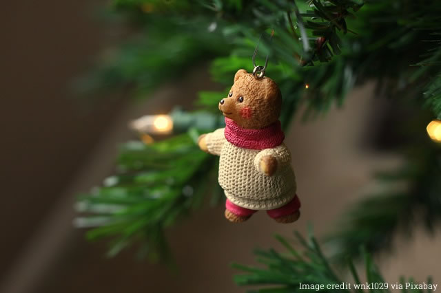 Image of bear wearing Christmas jumper