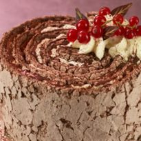 Asda Extra Special Chocolate Yule-lade