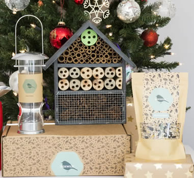 Boxwild Birds Bees Gift Box