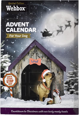 Webbox Advent Calendar