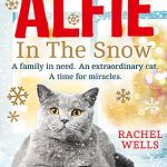 Social Media Giveaway: WIN Alfie in the Snow by Rachel Wells book