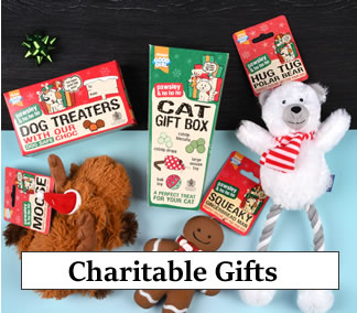Best Charity Chistmas Gifts 2019