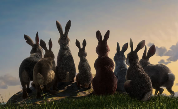 BBC One Watership Down