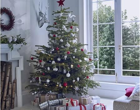 Dobbies Christmas Tree with Noma Lights