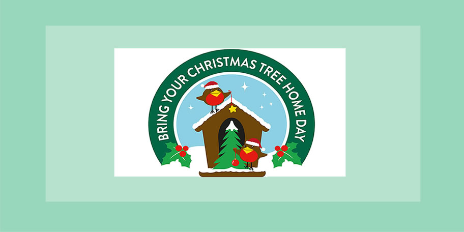 Image of Bring Your Christmas Tree Home Day logo
