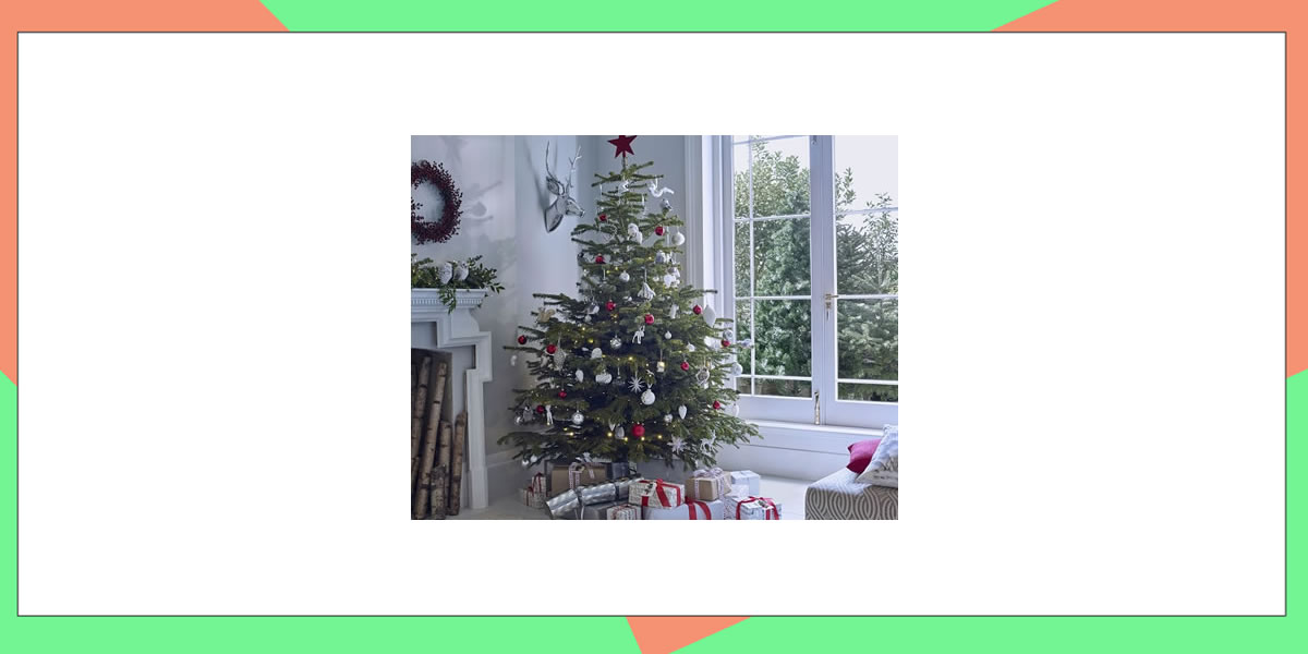 Image of Dobbies Norma Christmas Lights on Christmas tree