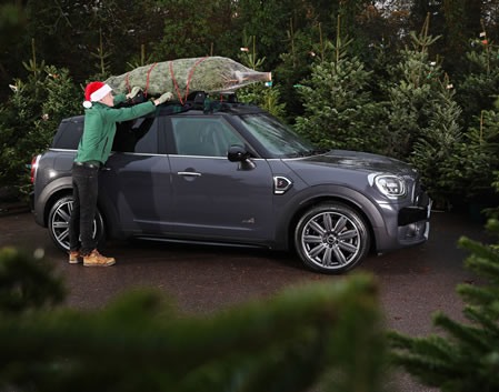 MINI with Christmas Tree on roof