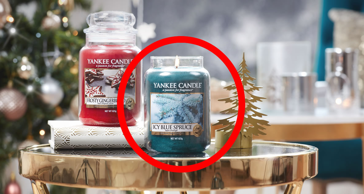 LARGE Icy Blue Spruce Yankee Candle