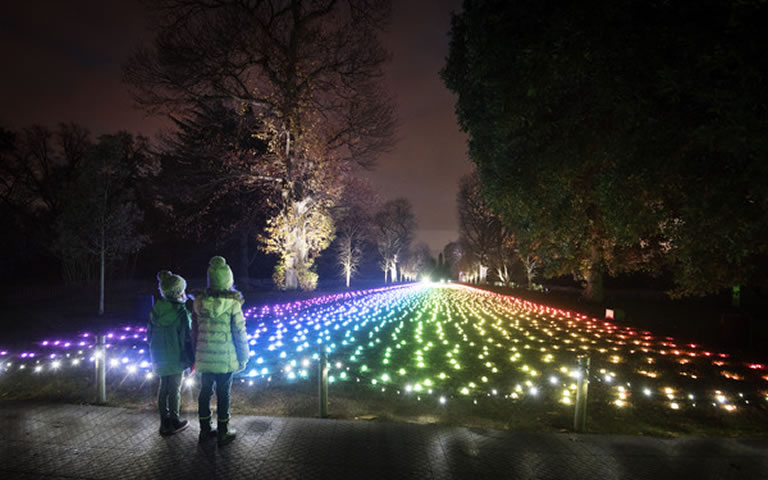 Image of field of lights at Kew Gardens