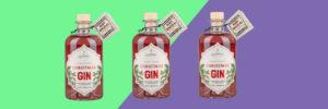 Image of Christmas Gin slider image