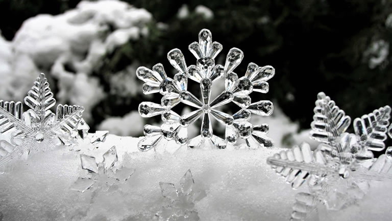 Image of ice theme