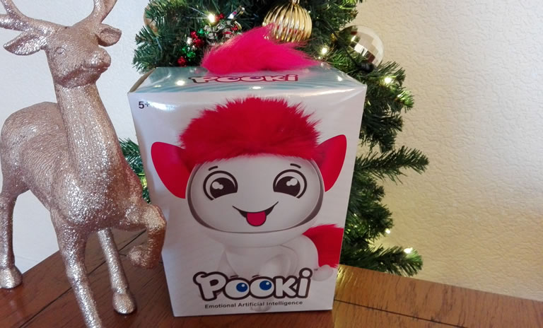 Image of Pooki toy in box