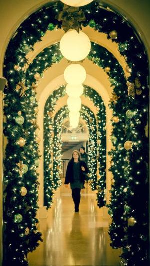 Bernadette Fallon Christmas Lights