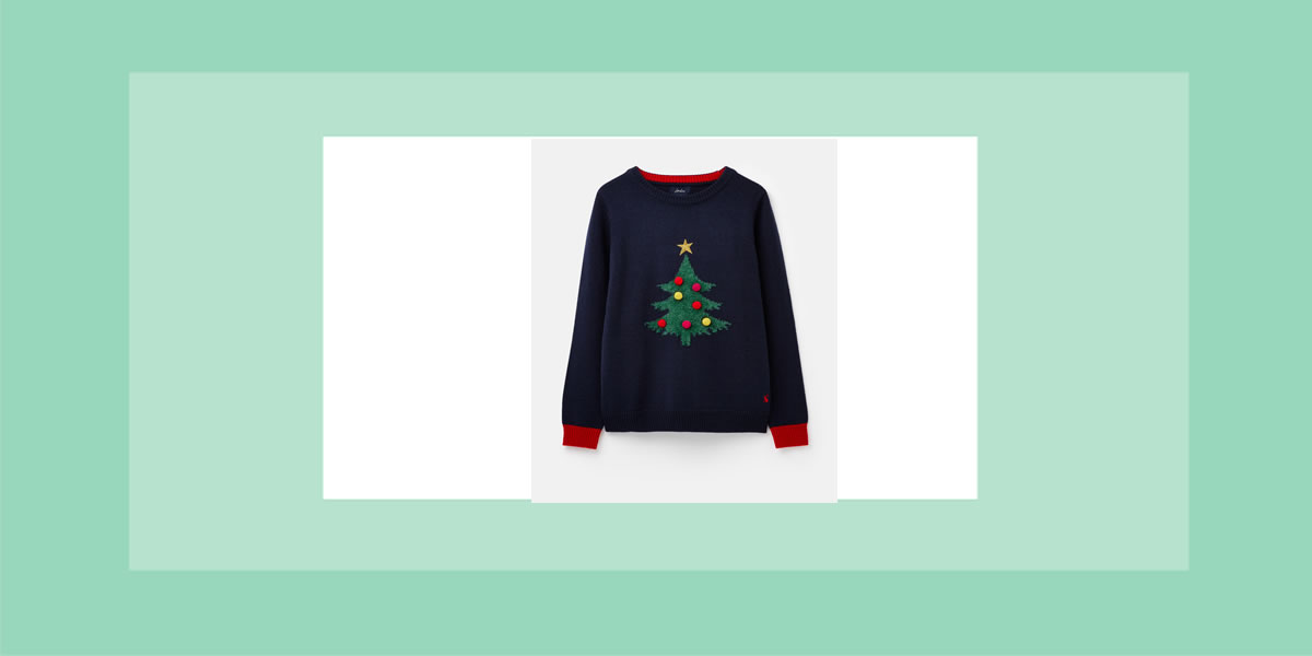 WALLACE & GROMIT AND JOULES cHRISTMAS JUMPER