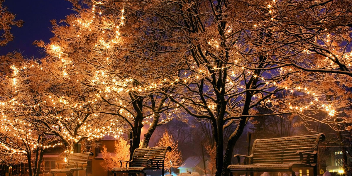 Outdoor Christmas lights