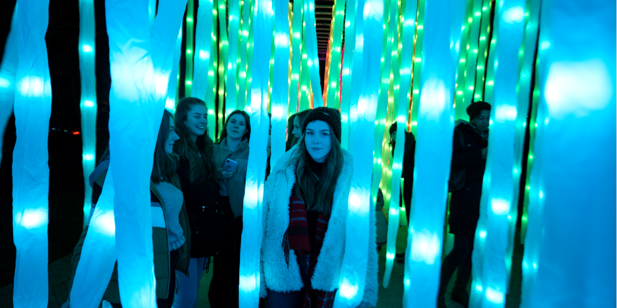 Vines by Mandylights. Christmas at Kew 2019. Credit Jeff Eden
