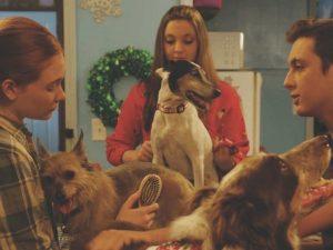Sony Movies Christmas - 12 Dog Days Till Christmas