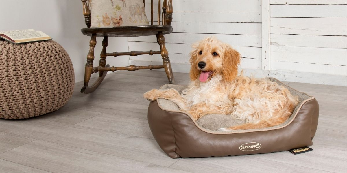 Pets Love Scruffs Chateau Orthopaedic pet bed