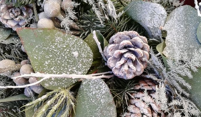 By Bloom Winter's Morning Wreath - Thistle and Pinecones