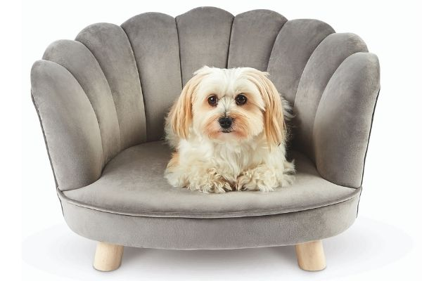 Aldi Scalloped Luxury Pet Chair (£39.99)