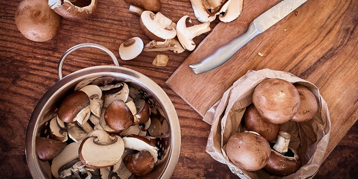 Different mushrooms to help health