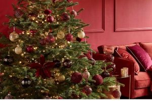Dobbies Christmas 2021 Yuletide Wonder