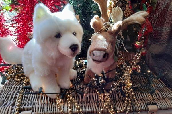 Living Nature Arctic Fox and Standing Reindeer